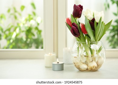 Beautiful tulips in glassware and candles on window sill. Space for text