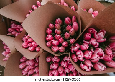 Beautiful Tulips, spring flowers grown in a greenhouse.Spring flowers and floriculture. Selective focus.