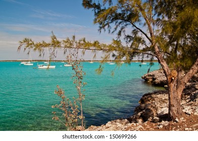 beautiful turquoise waters of the islands of the bahamas with many sailing and fishing boats anchored in the harbor of Black Point Sound in Exuma