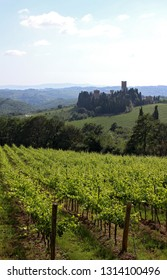A beautiful tuscan landscape with vineyards and a small abbey in the background
