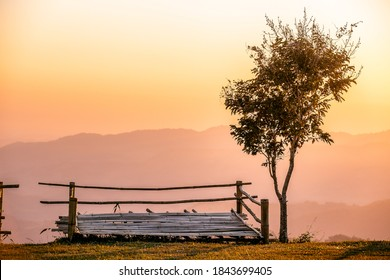 Beautiful of twilight sunrise at Doi kat phi mountain in Chiang Rai, Thailand