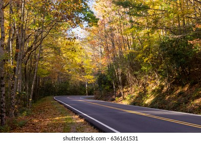 Beautiful Two Lane Highway Winding Through Autumn Forest on Sunny Evening