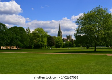 The beautiful typical UK scenery. Green grass and trees in the park on a sunny day with blue sky and fluffy clouds.