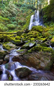 The beautiful Upper Kentucky Falls in the Siuslaw National Forest, Oregon