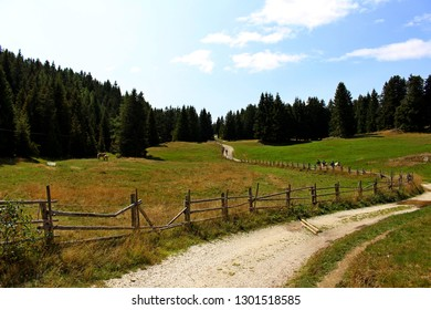 Beautiful valley on the San Vigilio mountain in South Tyrol