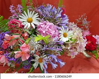 Beautiful variety of summer flowers