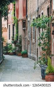 Beautiful Venice architecture