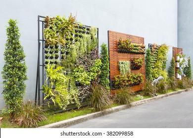 Beautiful vertical garden in city around office building