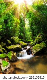 Beautiful vertical panorama of a cascade in the rainforest jungle of the Masoala National Park in Madagascar, a UNESCO world heritage site