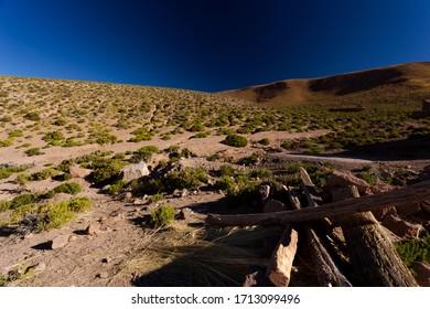 Beautiful Viajes of  at San Pedro de Atacama,  Antofagasta Region in  Chile.