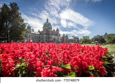 Beautiful Victoria Island and parlament building