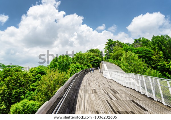 Beautiful view of amazing bridge imitating a wave. Fantastical shape of the pedestrian bridge in Singapore. Curving and twisting wooden walkway leading to a green park. Scenic sunny cityscape.