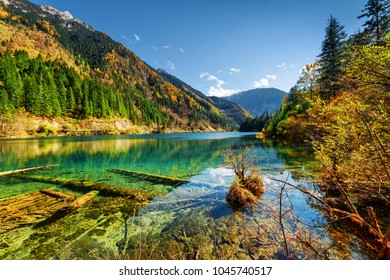 Beautiful view of the Arrow Bamboo Lake with crystal clear water among mountains and colorful fall woods in Jiuzhaigou nature reserve (Jiuzhai Valley National Park), China. Sunny autumn landscape.