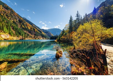Beautiful view of the Arrow Bamboo Lake with crystal clear water among mountains and colorful fall woods, Jiuzhaigou nature reserve (Jiuzhai Valley National Park), China. Scenic sunny autumn landscape
