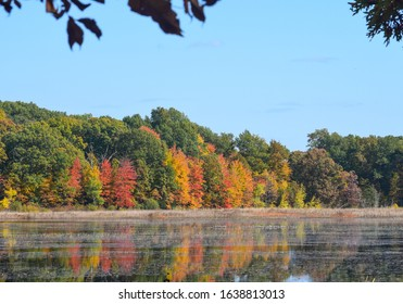 Beautiful view of autumn trees by the lake in Waterloo Park, Ann Arbor, Michigan, USA. Reflection of colorful leaves in lake water under blue sky.