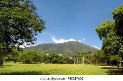 Beautiful view of Avila Mountain  from the East Park Warairarepano Caracas Venezuela