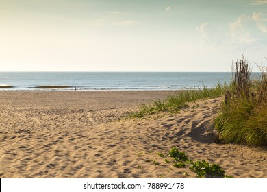 Beautiful view of the beach early in the  morning in a sunny day of summer. Golden light and sand. Mar de las Pampas. Argentina. Latin america.