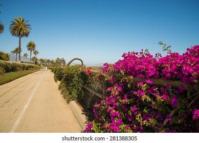The beautiful view from the bike path in Santa Barbara, California
