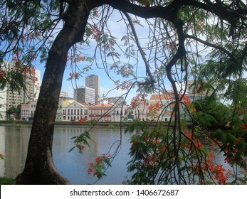 A beautiful view of the Capibaribe River and the old houses in the background, in Recife, Brazil.