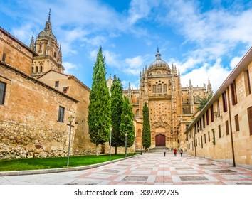 Beautiful view of Cathedral of Salamanca, Castilla y Leon region, Spain