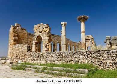 The beautiful view of the central part of antique roman ruined city Volubilis, Morocco, with the big stork's nest on the top of the column