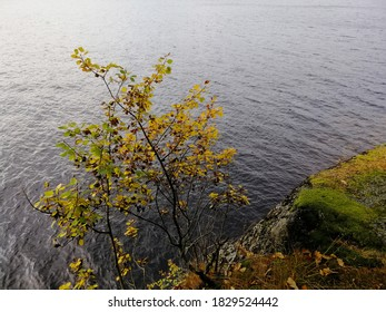 A beautiful view of a cliff near the Farris Lake in Larvik, Norway