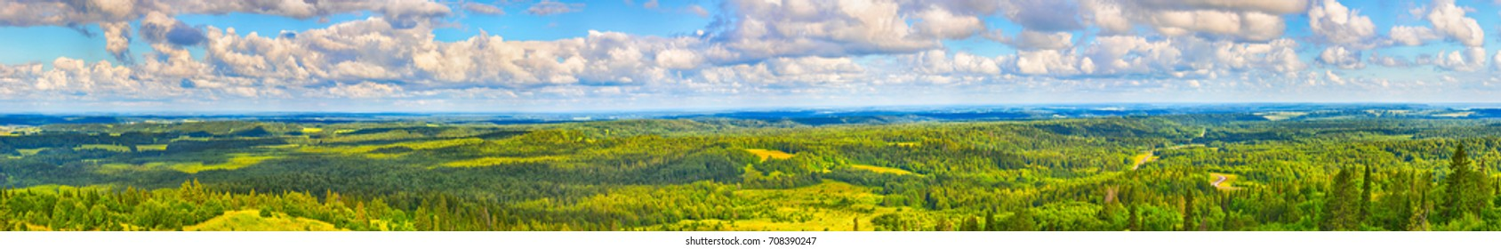 Beautiful view of the coniferous forest and meadows. Panorama