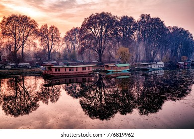 A beautiful view created by reflection of parked houseboats and trees on bank of Jhelum River, Jammu and Kashmir, India
