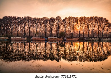 A beautiful view created by reflection of houseboats and trees on bank of Jhelum River, Jammu and Kashmir, India