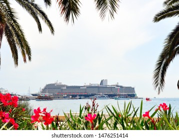 beautiful view of the cruise ship through the flowers and branches of palm trees.