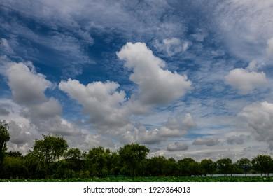 A beautiful view of cumulative clouds over a scenic green park