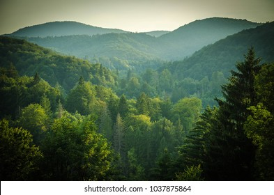 Beautiful view of forests and green hills, National park Plitvice Lakes, Croatia, Europe