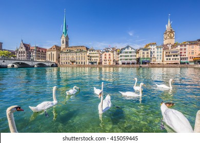 Beautiful view of the historic city center of Zurich with famous Fraumunster and Sankt Peter Church and swans on river Limmat on a sunny day with blue sky in summer, Canton of Zurich, Switzerland