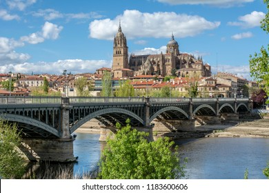 Beautiful view of the historic city of Salamanca with New Cathedral and Enrique Esteban bridge Spain