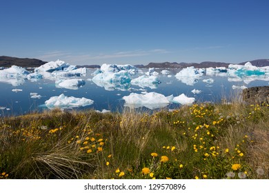 Beautiful view of icebergs floating by Narsaq city in South Greenland