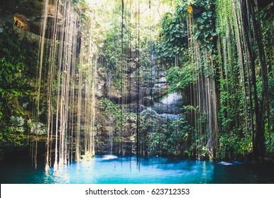 Beautiful view of Ik Kil under water lake in Mexico, Yucatan