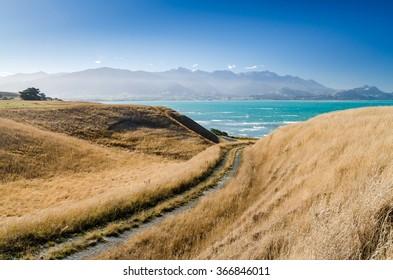 Beautiful view in Kaikoura