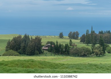 Beautiful view of the Kohala Coast on the Big Island of Hawaii taken from higher elevation