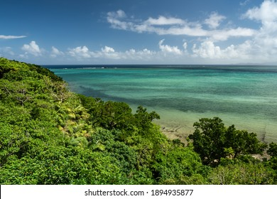 Beautiful view of the lush hillside of Iriomote island with a shipwreck in its calm and shallow waters in the background.