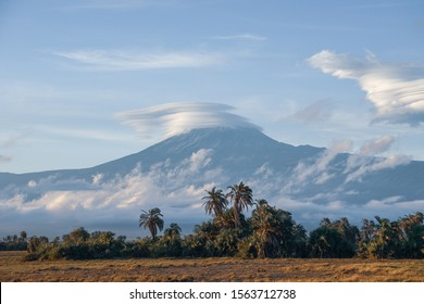 Beautiful view of the majestic Mount Kilimanjaro seen from Amboseli National Park, Kenya. Palm trees in the foreground, cool cloudscape. Slightly toned down colours, early morning light.