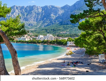 A beautiful view of Makarska beach through the pines. Dalmatia, Croatia.