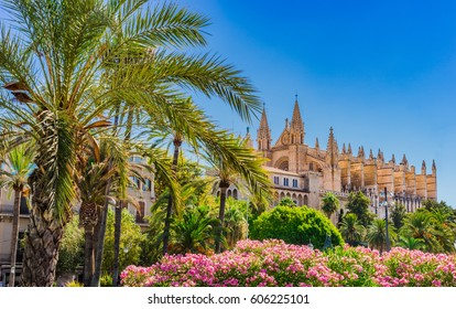 Beautiful view of the medieval Cathedral of Palma de Majorca, Spain Balearic Islands.
