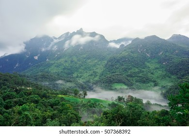 beautiful view Morning atmosphere for top travel in thailand and unseen thailand at Dol luang chiang dao in chiabg mai