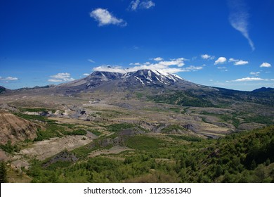 Beautiful view of mount saint helens snow capped volcanic peak and young forest during summer in the Pacific Northwest state of Washington