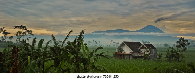 A beautiful view of Mount Semeru complete with banana trees, sugar cane fields, a traditional joglo house, and misty morning fog.