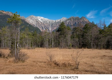 Beautiful view of mountain in Kamikochi's trail. Peak is covered by snow and foreground are pine tree and dry grass. Kamikochi, Japan