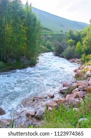 Beautiful view of mountain river in valley with pink stones & birchwood on riverside.