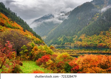 Beautiful view of mountains in fog, evergreen woods, colorful fall forest and scenic lakes in Jiuzhaigou nature reserve (Jiuzhai Valley National Park), China. Amazing autumn landscape.
