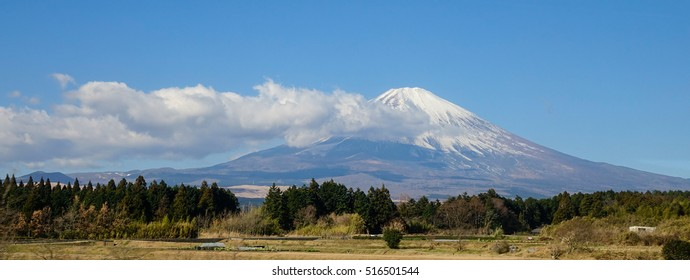 Beautiful view Mt. Fuji with snow, blue sky and dried grass in summer at Yamanashi, Japan.