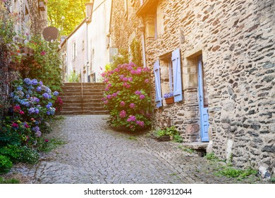 Beautiful view of narrow old street with historic traditional houses in old villge in Europe with blossom bushes of hydrangea.